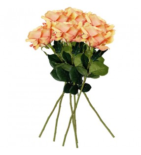 sandalias playa minnie chanclas